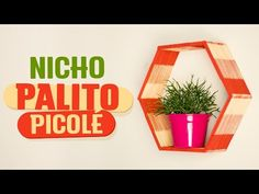 DIY - NICHO PALITO DE PICOLÉ - YouTube