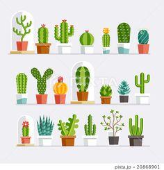Cactus flat style. Vector illustration.