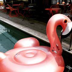 🔹En Bonne Compagnie 🔹  au Off Seine Paris #Brunch #brunchaddict  #Jaipiscine #Girlsout #flamandrose #cliche #friends #peniche #summer #Igersparis #austerlitz #swimmingpool #offseineparis #offseine