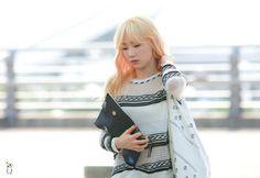 Paper tae, 150806 incheon airport by ohcori