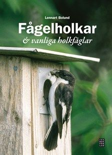 Våren närmar sig med stormsteg. Redan nu kan vi höra fågelkvitter. Varför inte bygga en fågelholk och följa en fågelfamilj. Birdhouses, Tips, Animals, Animales, Advice, Animaux, Bird Houses, Nesting Boxes, Animal