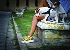 IconaBio le calzatur