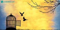 MutIuIuğun sırrı özgürIüktür, özgürIüğün sırrı ise cesarettir.   Tukidides #3MayısDünyaBasınÖzgürlüğüGünü  Sözler: http://sozlersitesi.com/guzel-sozler/ozgurluk-ile-ilgili-sozler/