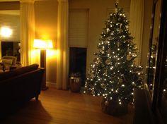 Onze kerstboom