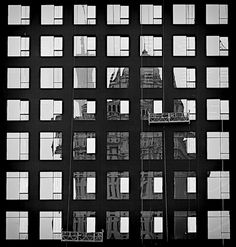 architectural grid creating a beautiful scene