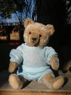 Vintage Hermann Teddy....Photo via Ebay