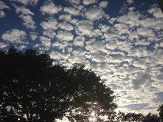 """""""Nubes vienen, tantas blancas, vienen."""""""