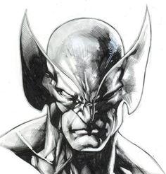 Wolverine by Stephen Segovia *