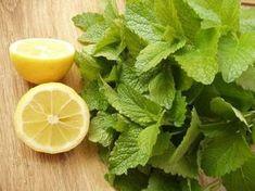 Citromfű szörp készítése Smoothie Drinks, Smoothies, Limoncello, Herb Garden, Healthy Drinks, Lettuce, Spinach, Food And Drink, Tasty
