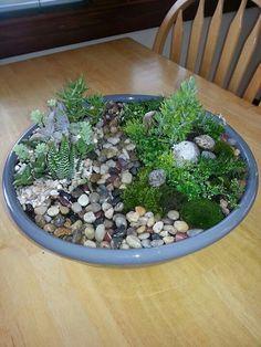 Liz's tabletop mini fairy garden.