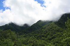 Smokey Mountains Gatlinburg Tennessee