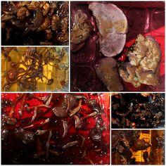 Wolle Natur Farben : Mit Pilzen gefärbt