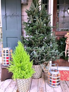 christmas-trees-on-front-porch