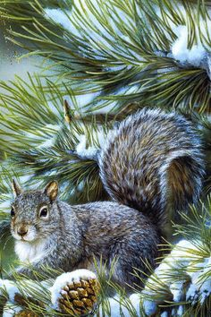 Eichhörnchen auf einem Zweig - Animation Telefon №1204830