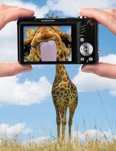 Samsung Zoom #camera #giraffe #advertising