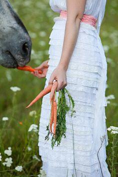 wedding + horses