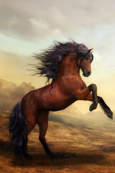 War Horse Wildlife Poster,War Horse Wildlife Poster Immortalize Your Memories with Frame Designs Nowadays, taking photos is becoming quite practical. Cute Horses, Pretty Horses, Horse Love, Horse Wallpaper, Animal Wallpaper, Wallpaper Art, Most Beautiful Horses, Animals Beautiful, Horse Artwork