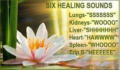 six healing sounds balance internal organs
