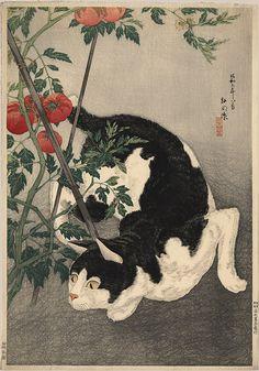 "Hiroaki, Takahashi (1871-1945), ""Cat and Tomato Plant"" Castle Fine Arts"