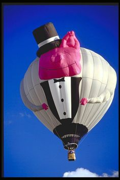1000+ images about Pig Balloons on Pinterest | Pigs ...