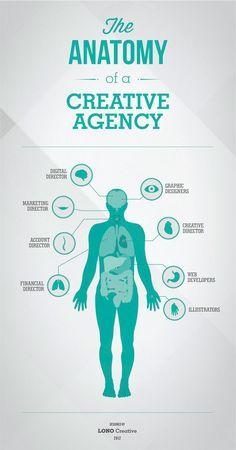 Infographic Design The Anatomy of a Creative Agency Arts Digital Era Marketing Guru, Digital Marketing, Business Marketing, Email Marketing, Creative Infographic, Business Branding, Identity Branding, Visual Identity, Advertising Agency