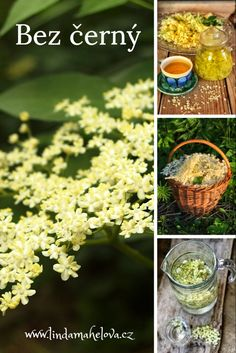 Diy And Crafts, Food And Drink, Herbs, Drinks, Fit, Syrup, Drinking, Beverages, Shape