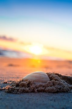 Far Rockaway Beach - Long Island, New York by Steven Lindgren