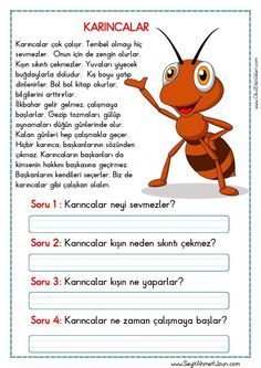 hukmary - 0 results for education Toddler Learning Activities, Class Activities, 1st Grade Worksheets, Preschool Worksheets, Turkish Lessons, Teaching Handwriting, Learn Turkish Language, Classroom Rules, Reading Passages