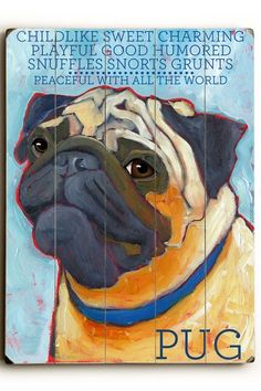 I might have pinned this already, not sure :: Pug on HauteLook