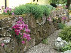 Enhancing Walls - Good Fences Make Good Neighbors: Picking Materials for Boundaries on HGTV