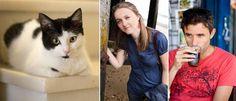 About us - Lazy Cat Kitchen