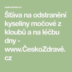 Šťáva na odstranění kyseliny močové z kloubů a na léčbu dny - www.ČeskoZdravě.cz