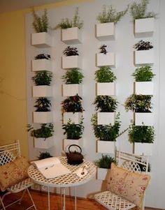 Horta vertical - vertical garden