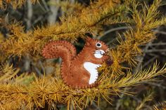 We enjoy the little red squirrels that live in our woods. Their antics as they try to raid the bird feeders are so very entertaining and provide lots of great photo ops. Your bird feeders are safe …