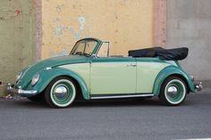Vw Beetles, My Boyfriend, Cars, Classic, Vw Bugs, Derby, My Friend, Autos, Car