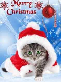 Die 22 besten Bilder von Weihnachten in 22 | Good morning, Happy ...