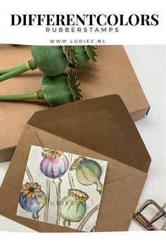 Stamping Up, Different Colors, Poppies, Gift Wrapping, Colours, Cards, Gifts, Instagram, Flowers
