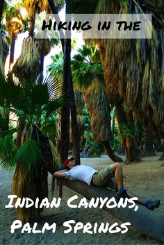 I haven't expected that we will find our perfect little desert in the Indian Canyons of Palm Springs and that hiking in a desert could be so much fun!