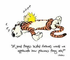 Cavin and  Hobbes....true