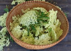 Elderflower Recipes: cordial, liqueur, tea, jelly, cake + more! Kosher Dill Pickles, How To Grow Lemon, Elderflower Cordial, Jelly Cake, Thing 1, Lemon Balm, Recipes For Beginners, Canning Recipes, Medicinal Plants