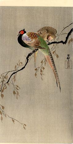 Koson  Two Pheasants