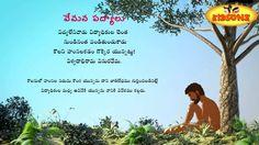 Saved by radhareddy garisa Love Quotes In Telugu, Whatsapp Profile Picture, Celebrity Biographies, Kids Videos, Jukebox, Poems, Youtube, Beautiful Saree, Door Design
