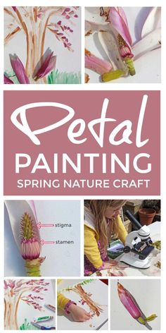 These spring petal paintings are a lovely easy spring nature craft for home or the classroom that lets even preschool children dissect, explore and diagram flower parts including stigma and stamen. Spring Activities, Craft Activities For Kids, Kids Crafts, Outdoor Activities, Activity Ideas, Sensory Activities, Toddler Crafts, Learning Activities, Painting For Kids