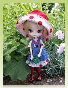 As a gardener ... | Flickr - Photo Sharing!