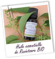 Huile essentielle Ravintsara (Ravintsare) BIO Aroma-Zone