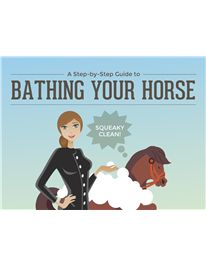 No I don't have a horse, but its interesting to know how easy it is to bathe one.