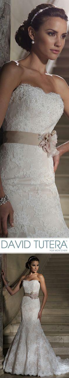 Style no 213249 vereda wedding dresses 2013 collection for No back wedding dress