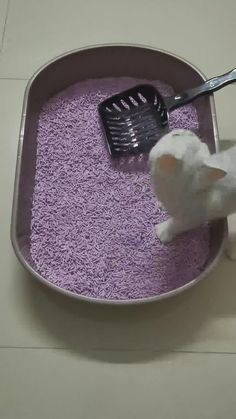 To review our heavy duty large cat litter scoop, contact us via email: services@petduro.com. Follow us for more funny cute cat videos and high quality products for cats and dogs. Funny Cute Cats, Cute Cat Gif, Kinds Of Cats, Cat Supplies, Litter Box, Dog Cat, Ceramics, Pets, Videos