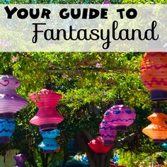 Fantasyland broken down ride by ride. What you need to know about each ride and their line!