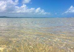 Maragogi em Alagoas: O que fazer, onde comer, onde ficar, quando chegar e onde ir. Um mini guia para quem quer planejar uma viagem para lá.